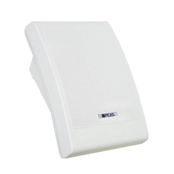WS810 10W Wall-mount Speaker